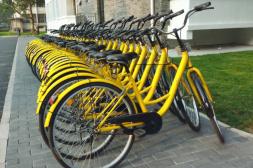 共享单车进校园关键要管理好